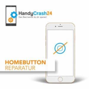 Apple iPhone Homebutton Reparatur