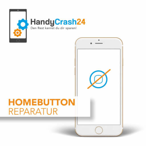 Apple iPhone Homebutton Reparatur